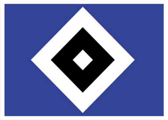 Bildung ist Zukunft e. V.   hsv1 HSV Bundesliga Profi Tolgay Arslan unterstützt Promis Helfen e.V.