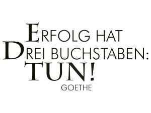 Bildung ist Zukunft e. V.   Goethe 300x225 Es gibt viel zu tun...